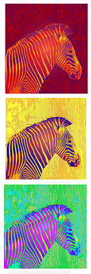 Zebra Digital Art - Three Zebras 2 by Jane Schnetlage