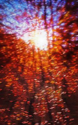 Through The Autumn Leaves Print by Steve Ohlsen