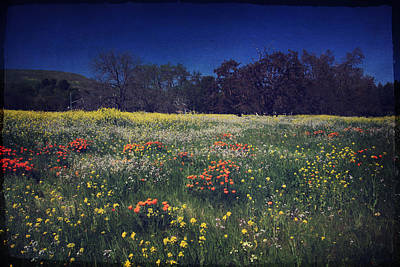 Through The Blooming Fields Print by Laurie Search
