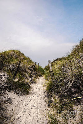 Through The Dunes Print by Hannes Cmarits
