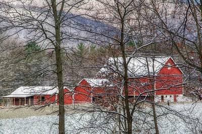 Red Barn In Winter Photograph - Through The Trees by Stephanie Calhoun