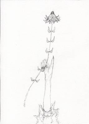 Optimistic Drawing - Thumbs Up Flower by Jim Taylor