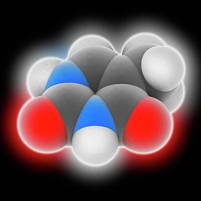 Thymine Molecule Print by Laguna Design