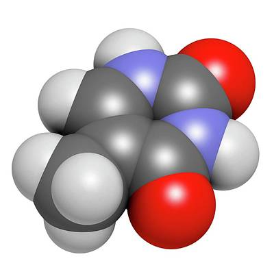 Thymine Nucleobase Molecule Print by Molekuul
