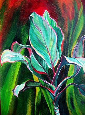 Ti Plant Print by Jaya C Dupuis