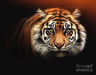Tiger Bright Print by Robert Foster