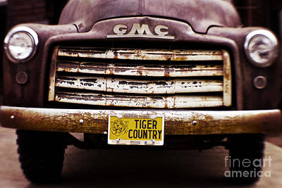 Tiger Country - Purple And Old Print by Scott Pellegrin