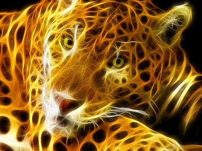 Macro Digital Art - Tiger Face  by Mark Ashkenazi