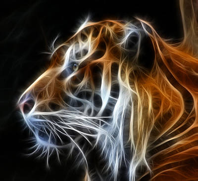 Digital Mixed Media - Tiger Fractal by Shane Bechler
