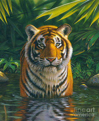 Tiger Photograph - Tiger Pool by MGL Studio - Chris Hiett