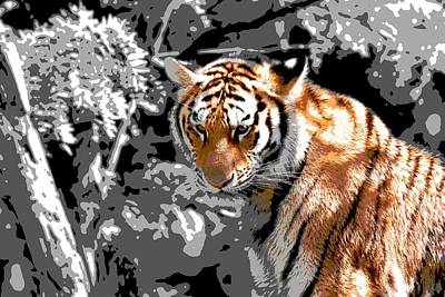 Tiger Digital Art - Tiger Poster by Dan Sproul