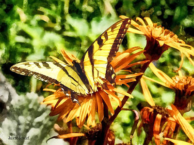 Tiger Swallowtail On Yellow Wildflower Print by Susan Savad