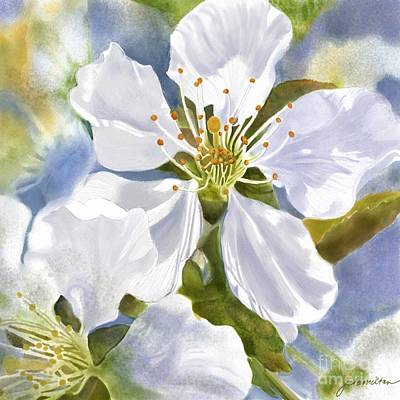 Time To Blossom Print by Joan A Hamilton