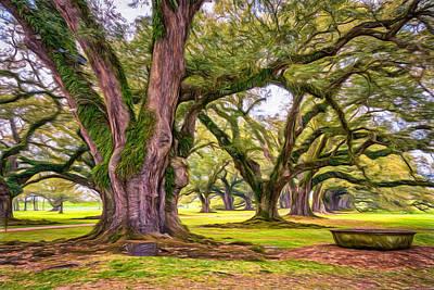 Tree Roots Digital Art - Time Travel - Paint by Steve Harrington