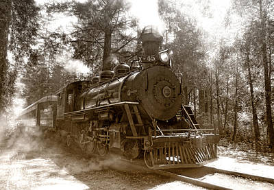 Train Tracks Photograph - Time Traveler by Donna Blackhall