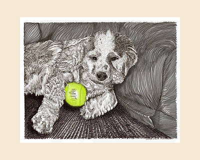 Pen And Ink Drawing Drawing -  Tired Puppy by Jack Pumphrey