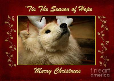 Anticipation Digital Art - 'tis The Season Of Hope Merry Christmas by Lois Bryan