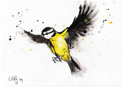 Titmouse Drawing - Titmouse Flying by Silja Erg