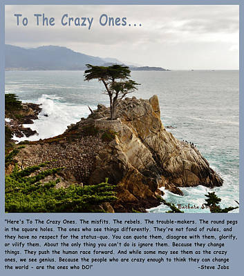 To The Crazy Ones Lone Cypress Print by Barbara Snyder
