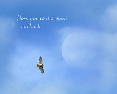 Red Tail Hawk Photograph - To The Moon And Back by Bill Wakeley