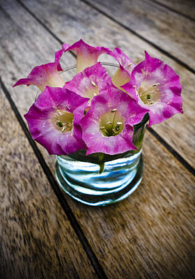 Flowers In A Vase Photograph - Tobacco Flowers by Frank Tschakert