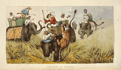 The Tiger Hunt Photograph - Tom Raw In Danger by British Library