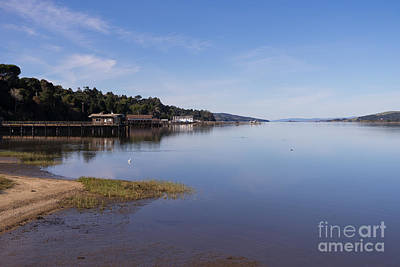 Contemplative Photograph - Tomales Bay At Inverness Point Reyes California Dsc2138 by Wingsdomain Art and Photography