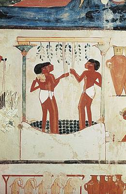Tomb Of Nakht. Egypt. Dayr Al-bahri Print by Everett