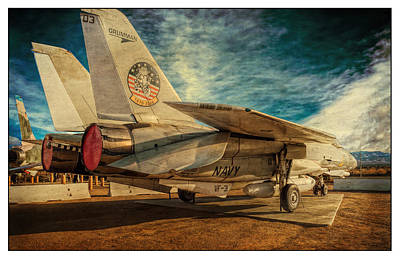 Oldzero Photograph - Tomcat In Palmdale by Steve Benefiel