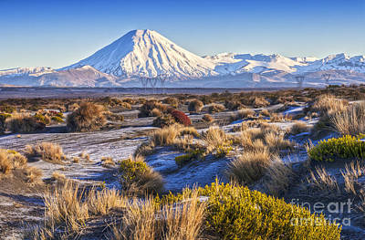 Tongariro National Park New Zealand Print by Colin and Linda McKie