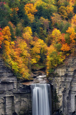Top Of The Falls Print by Mark Papke