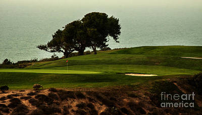 Torrey Pines Golfcourse Print by Darleen Stry