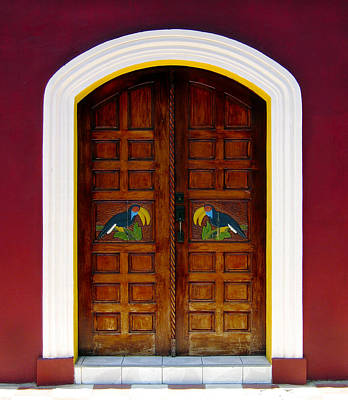 Toucan Photograph - Toucan Door by Kurt Van Wagner