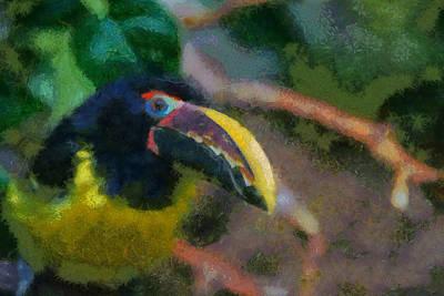 Toucan Digital Art - Toucan by Ernie Echols