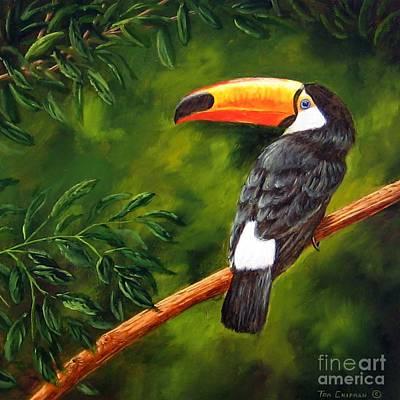 Toucan Original by Tom Chapman