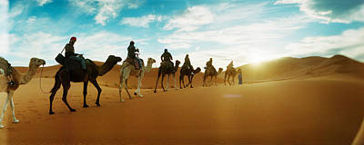 Tourists Riding Camels Print by Panoramic Images