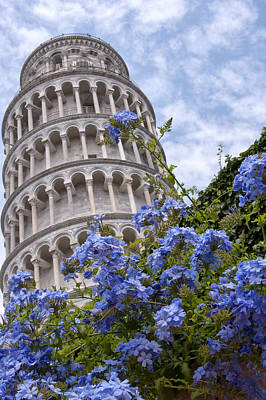 Tower Of Pisa With Blue Flowers Print by Melany Sarafis