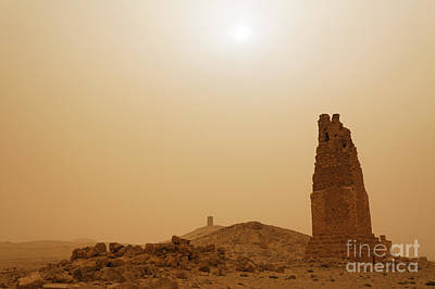 Palmyra Photograph - Tower Tombs Palmyra Syria In The Light After A Sandstorm by Robert Preston
