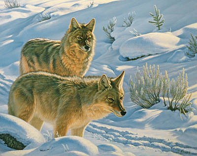 Coyote Painting - Trackers by Paul Krapf