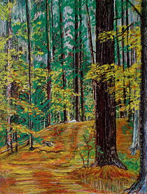 Trail At Wason Pond Print by Sean Connolly