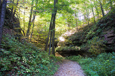 Muscatine Photograph - Trail To Devil's Punch Bowl Wildcat Den by Cynthia Woods