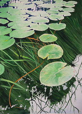Watercolor Painting - Tranquil Lily Pads by Christopher Reid