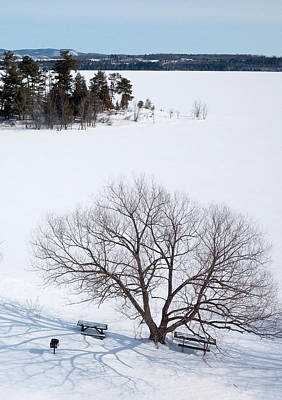 Kites Photograph - Tree And The Point In Winter by Rob Huntley