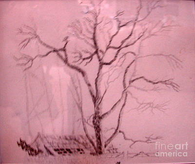 Tree Growing Out Of Barn Original by Joseph Hawkins