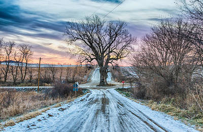 Winter Landscapes Photograph - Tree In The Middle Of The Road by Christopher L Nelson