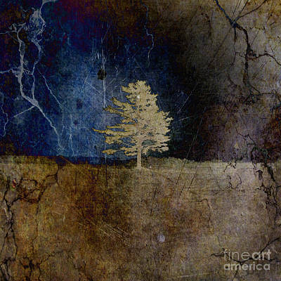 Cracks Digital Art - Tree Journey - Sp44a by Variance Collections