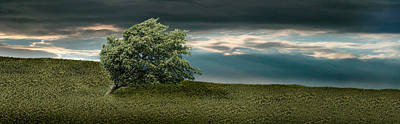 Tree Swaying In Storm Print by Panoramic Images