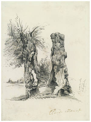 Impressionism Drawing - Tree Trunks At La Mare Eu Clere by Claude Monet
