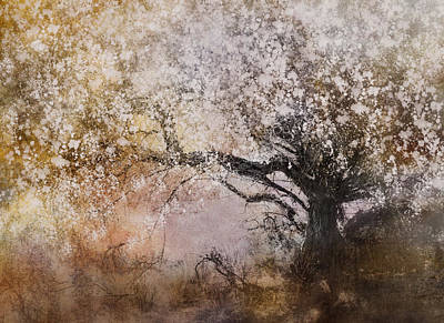 Tree Whispers Print by Amy Weiss