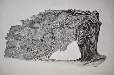 Tree With Faces Print by Glenn Calloway